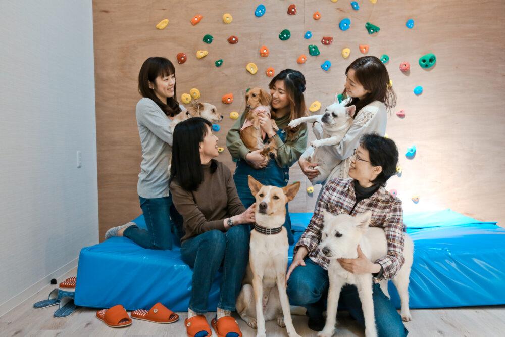 わんずハイム|保護犬と暮らせるシェアハウス【東京都東大和市】